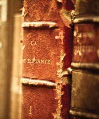 Sandie Harding Book Repair & Conservation